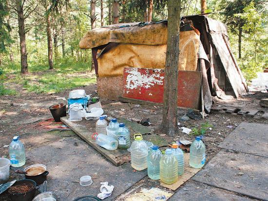 Нелегальная жизнь мусорных полигонов: от поселений бездомных до торговли продуктами