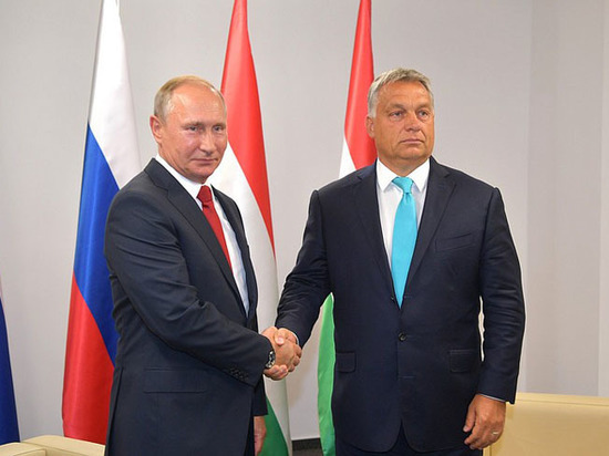 Путин преподал венгерскому премьеру теорию искусства побеждать