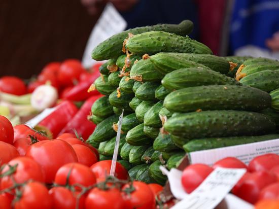 «Трясется огородник»: эксперт объяснил необходимость продовольственных талонов в России