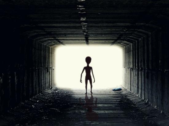 Ученые поведали, как могут выглядеть инопланетяне