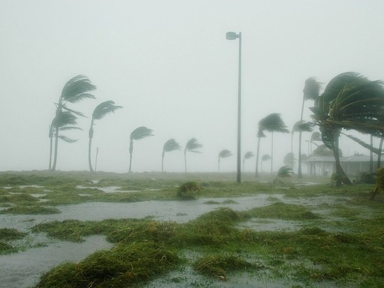 Ураган Ирма: губернатор Флориды призвал готовиться к худшему