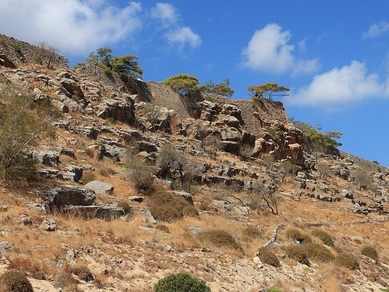 Палеонтологи нашли на Крите следы древних родственников человека