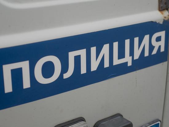 Очевидцы сняли избиение ребенка петербурженкой из-за собаки на детской площадке