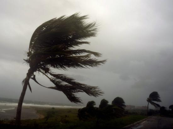 Ураган «Ирма» оставил без света половину жителей Флориды