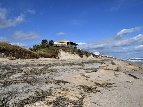 После урагана «Харви» на техасском пляже нашли загадочного монстра