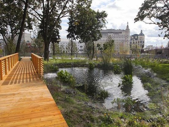 Психолог обвинила москвичей в разрушении парка