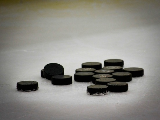 Дочь экс-вратаря хоккейного ЦСКА подозревается вего убийстве