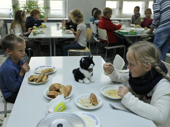 Школьное питание попало под картель
