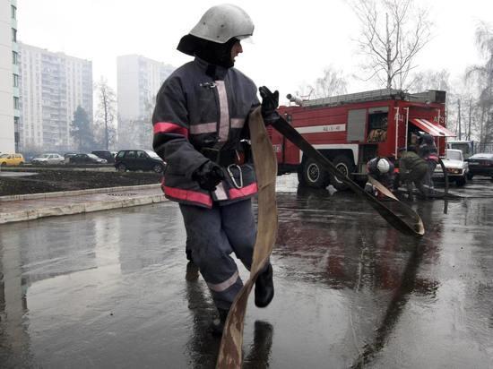 ВПодмосковье задержаны подозреваемые вподжогах 6 автобусов