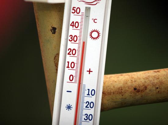 Ученые: к 2050-ому 40-градусная жара вполне может стать нормой