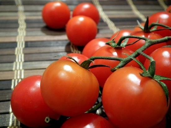 Запрет наимпорт турецких томатов в Российскую Федерацию снимут вближайшие дни