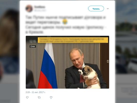 Владимир Путин получил вподарок отпрезидента Туркмении «Верного» щенка