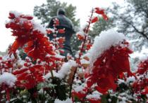 Синоптики сообщили о появлении первого снега в Подмосковье