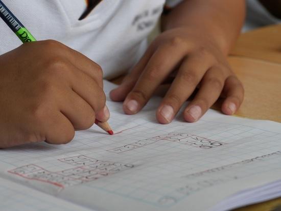 ВПерми проверят школу, где обучалась скончавшаяся в КНР модель