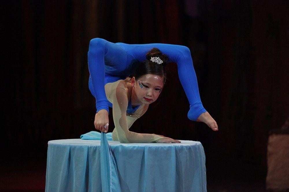 Его участниками стали 60 любительских коллективов из 17 регионов России. Всего в фестивале принимают участие более 500 человек - воздушные гимнасты, жонглеры, акробаты... Подведение итогов и награждение победителей состоится 2 ноября.