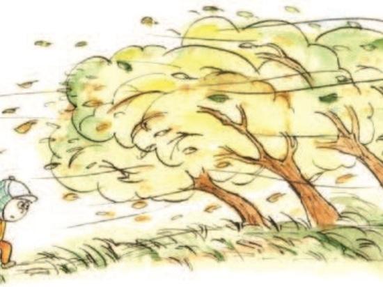 На Кубани во второй декаде ноября будет облачная погода