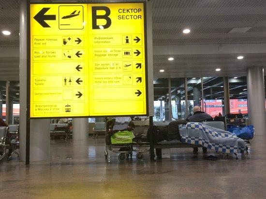 Вечные пассажиры «Шереметьево»: «Стираем в туалетах, едим в столовой для сотрудников»