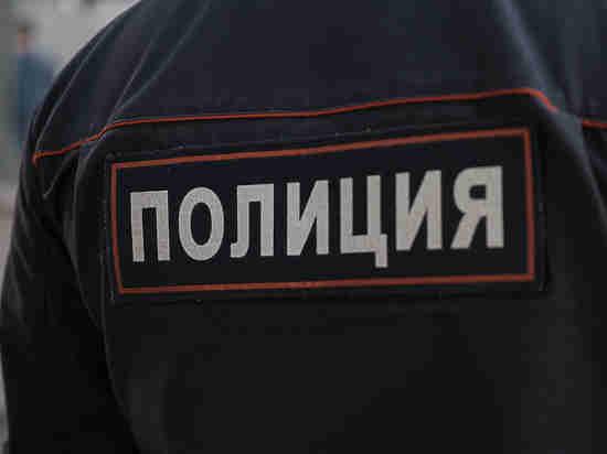 Покалечивший брата тесаком ребенок покончил ссобой в столице России