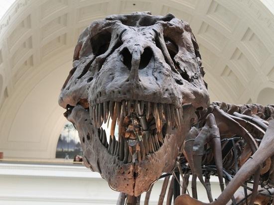 Биологи впервые воспроизвели пугающий «голос» тираннозавра