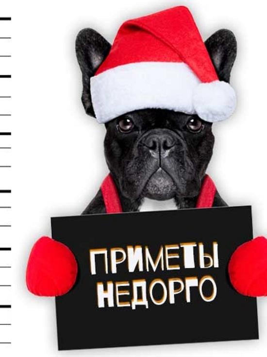 Как и с кем    жители Кубани встретят  Желтую Земляную Собаку