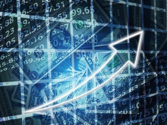 «Деловые Линии» улучшили финансовые показатели вопреки кризису