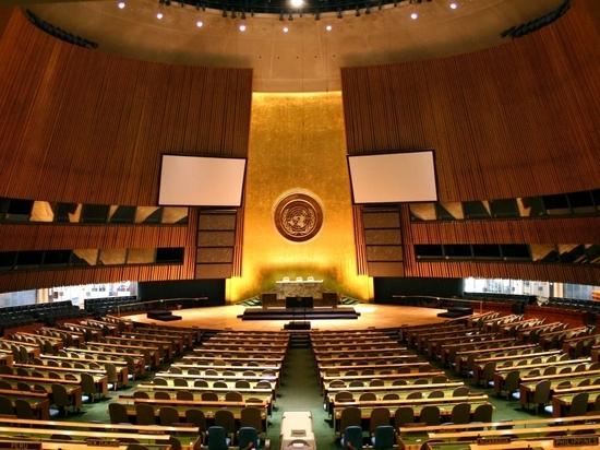 «Пиррова победа»: вСовфеде оценили голосование вОрганизации Объединенных Наций повопросу Крыма