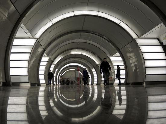 Оформление станции метро «Фонвизинская» изменили: Митрофанушка стал «живым»