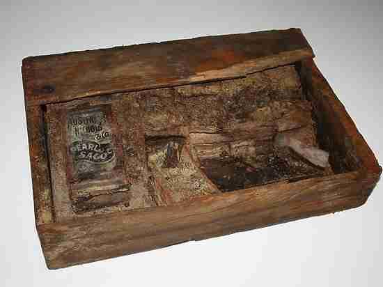 Найдены 200 артефактов американских полярников в Архангельской области