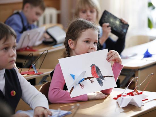 «За новогодние каникулы забыл школу»: советы о мягкой учебе детей