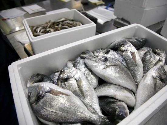 Ни рыба ни мясо: Минтруд предложил улучшить потребительскую корзину