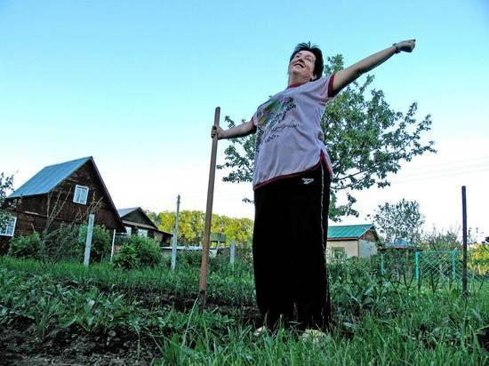 Счетная палата испугалась за Россию: люди перестают выращивать картошку