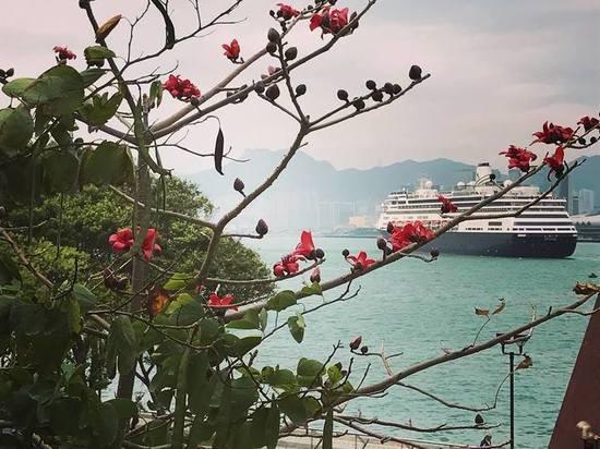 «Как я переехала жить в Гонконг»: рассказ москвички