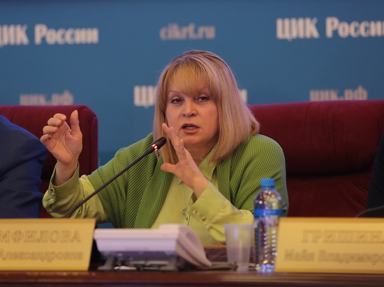 Центризбирком раскрыл доходы кандидатов: сколько заработали Путин, Грудинин и Собчак фото