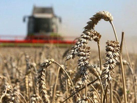Мордовские аграрии в этом  году получат более 3 млрд рублей господдержки