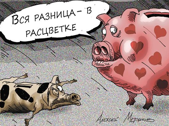 Данные о запредельных зарплатах чиновников взбудоражили россиян