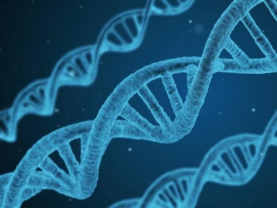 Ученые установили, как гены могут воздействовать  наспособность ксопереживанию
