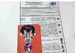В течение всего дня всеобщего голосования, 18 марта, некоторые россияне выставляли в сетях испорченные бюллетени. Причем, нашлись выдумщики, которые не просто перечеркнули фамилии кандидатов в президенты, но и вписали своих кумиров. Среди них Борис Гребенщиков, Сергей Шнуров, персонажи сериала «Игры Престолов», роботы-трансформеры и т.д. Также на бюллетенях появлялись стихи, веселые картинки и прочее народное творчество.