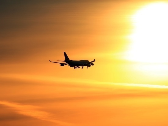 Суд признал деструктивного пассажира «Аэрофлота» виновным по статьям Уголовного кодекса
