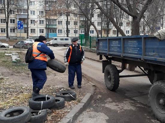 В Ульяновске за месячник по благоустройству уберут 31 свалку
