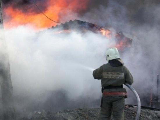 В сгоревшем доме в Тверской области нашли останки погибшего человека