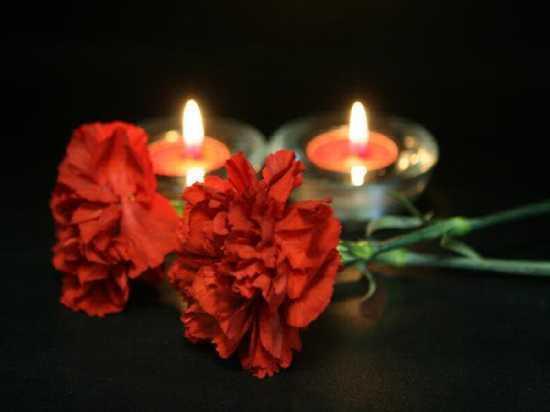 В Ульяновске изготовят Дерево скорби в память о погибших в Кемерово