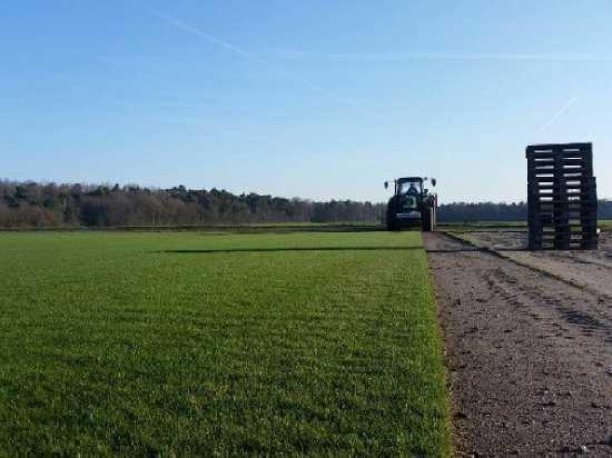 Футбольный газон «Самара Арены» везут на22 грузовиках
