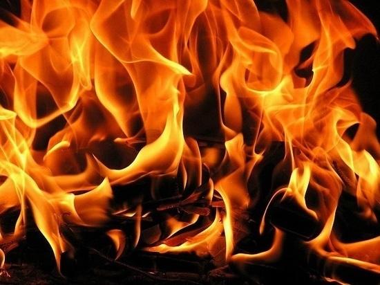 В Нижнекамске тракторист пытался потушить горящую иномарку