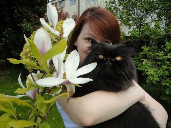 Британцы убили выжившего кота Скрипаля: зоозащитники требуют расследования