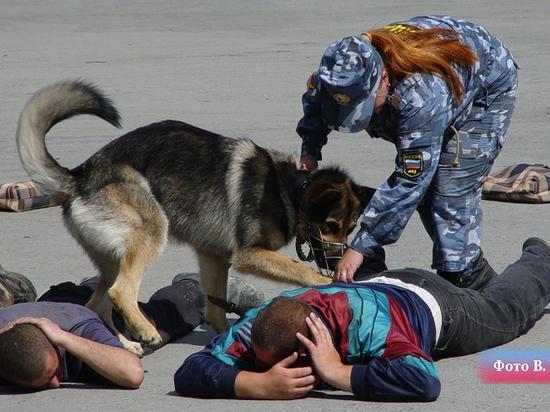 При охоте на мошенников с недвижимостью свердловские полицейские освободили пленника