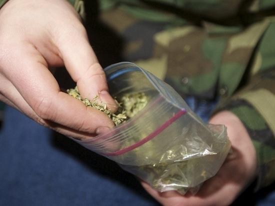 Аргентинская милиция свалила пропажу полтонны наркотиков намышей