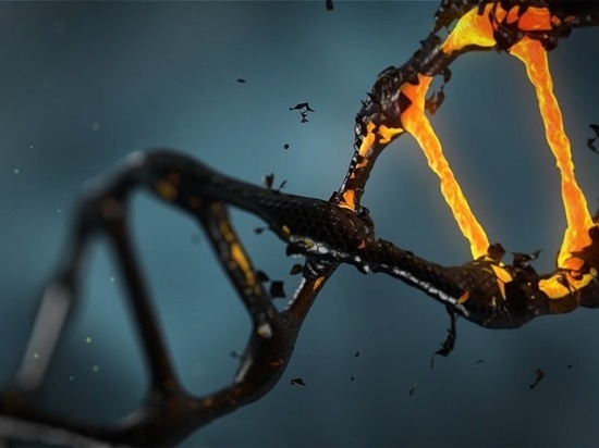 Российские специалисты придумали, как «чинить» ДНК в раковых клетках