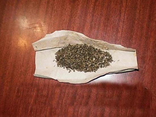 Житель Саранска отправился в Санкт Петербург с марихуаной в кармане