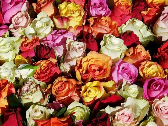 Романтичный белгородец украл букет роз