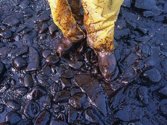 В Тольятти директор организации ответит за загрязнение почвы нефтепродуктами